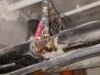 2019r. - Rataja 2 - remont poziomów inst. wodociągowej