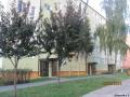 Altanowa 1