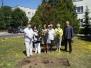 Posadzenie krzewu białej róży - prezentu od Rady Osiedla Nowy Fordon - 17.06.2013r.