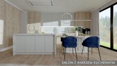 8_1-Salon-z-aneksem-kuchennym